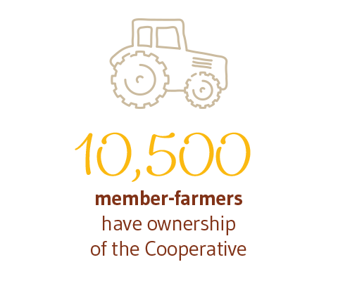 11,000 member-farmers have ownership of the Cooperative