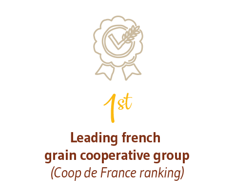 1st leading french grain cooperative group