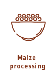 Maize processing