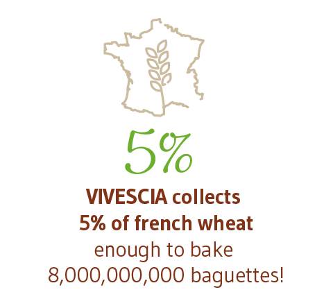 5% VIVESCIA COLLECTS 5% OF FRENCH WHEAT